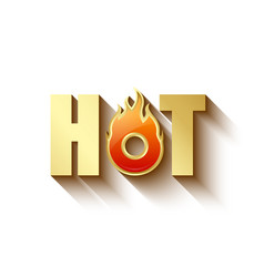 golden hot lettering vector image