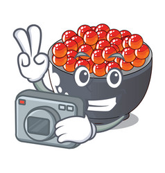 Photographer salmon roe character ready to eat vector