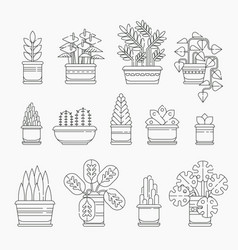 Set of houseplants icons in line design editable vector