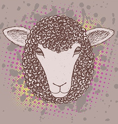Sketch sheep poster vector image