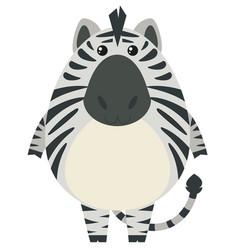 zebra with round body vector image
