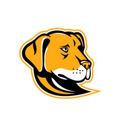 labrador retriever dog mascot vector image vector image