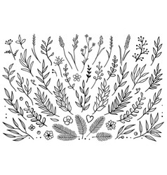 Hand drawn set of tree branches vector