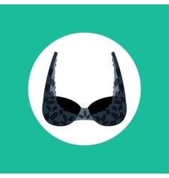 Lace bra vector image