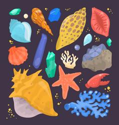 Sea shells marine cartoon clam-shell and ocean vector