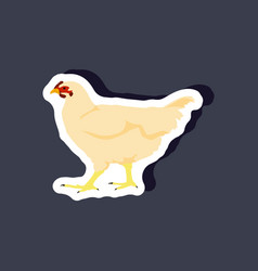 hen paper sticker on stylish background vector image