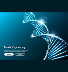 dna structure genetic engineering web app vector image