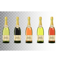 set different champagne wine bottles on vector image