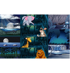 Wild animals in the forest vector