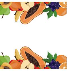 fruit healthy border card vector image