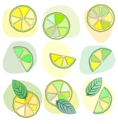 citrus mojito pattern vector image vector image