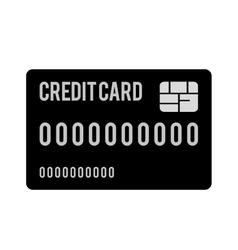 Credit or debit card icon image vector