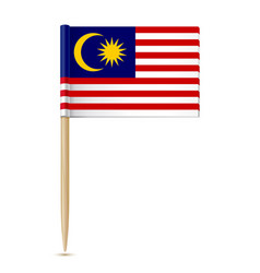 flag of malaysia toothpick vector image vector image
