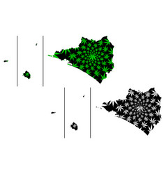 Colima revillagigedo archipelago map is designed vector