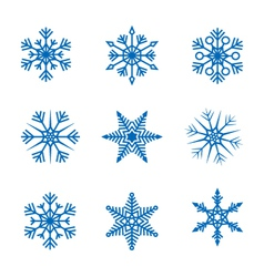 collection snowflakes vector image