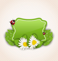 cute spring card with flower daisies leaves vector image