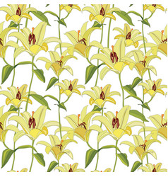 Floral background flower lily background flourish vector