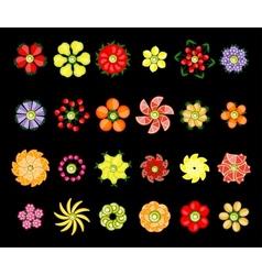 Flower design set made from fruits vector image