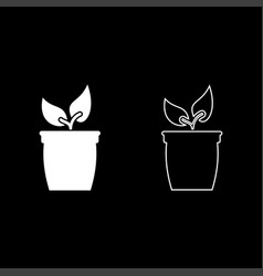 flowerpot or pot with plant icon set white color vector image