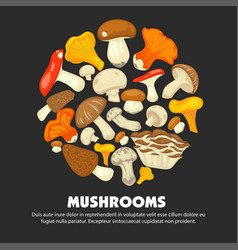 Organic ripe mushrooms grown at forest promotional vector