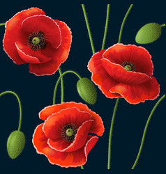 Poppy pattern black vector
