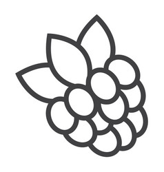 raspberry line icon fruit and diet vector image