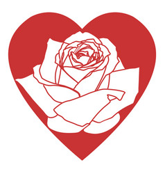red heart with rose isolated on white icon vector image