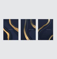 set brochure template elegant abstract golden vector image
