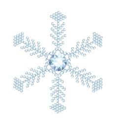 snowflake jewelry vector image