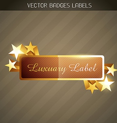 shiny golden label vector image vector image