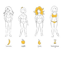 female types of figures vector image