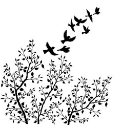 flying birds silhouettes and tree foliage vector image