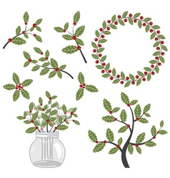 Holly Set vector image vector image