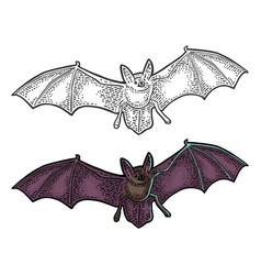 Bat flying with scary face black vintage vector