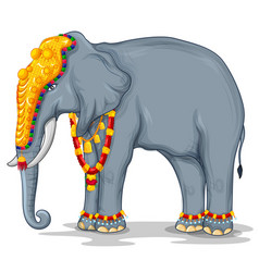 Decorated indian elephant used in different vector