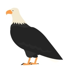 flat bird isolated on white background beautiful vector image