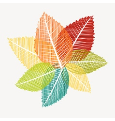 Colorful abstract transparent leaves autumn vector image