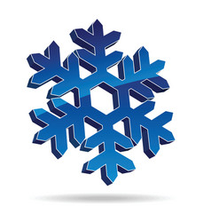 snow flake vector image vector image