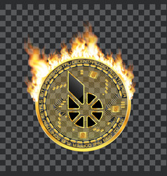 Crypto currency bitshares golden symbol on fire vector