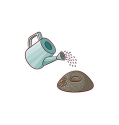 flat watering can pouring water ground seed vector image