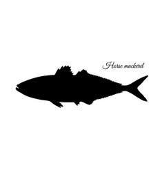 Silhouette of horse mackerel vector