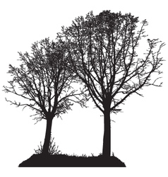 silhouette of two trees vector image