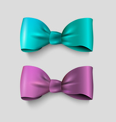 two realistic bow - green and violet isolated vector image