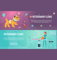 veterinary clinic horizontal banners vector image vector image