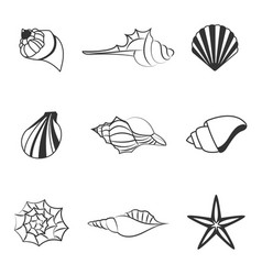 sea shell of line silhouettes vector image