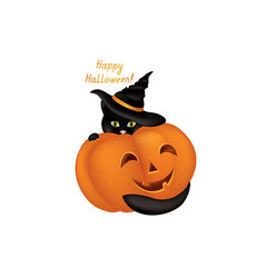 cat in a witch hat black cat looking at camera in vector image