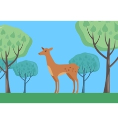 Fallow-deer in habitat flat design vector