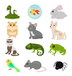 Home pets set isolated on vector