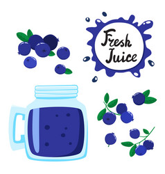 Juice with blueberry in a glass bank vector