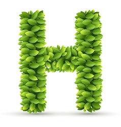 Letter h alphabet green leaves vector